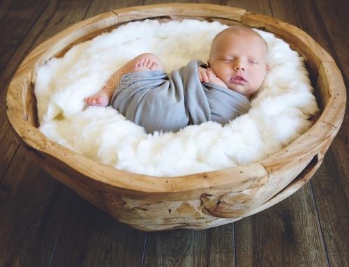 Newborn Photography / Gold Coast Newborn Photographer